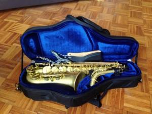 Forestone Saxophon Tenor Alt (5)